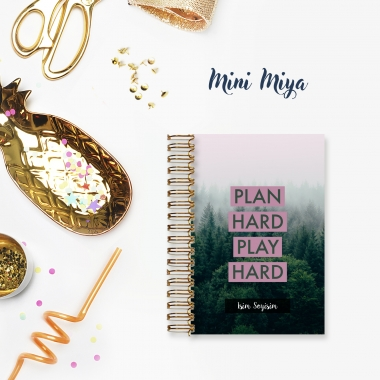 Plan Hard - Mini Miya