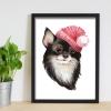 Şapkalı Köpekçik